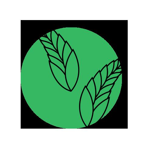 icon-02-culture