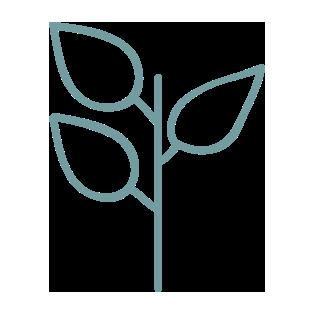 icon-06-plant